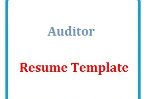 Auditor Resume Template