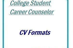 College Student Career Counselor CV Formats