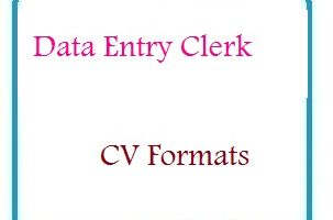 Data Entry Clerk CV Formats