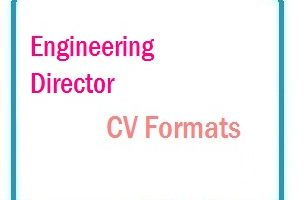 Engineering Director CV Formats