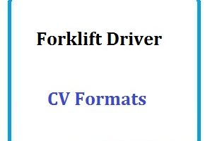 Driver Cv S Template Cv Format And Cv Sample