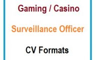 Gaming/Casino Surveillance Officer CV Formats