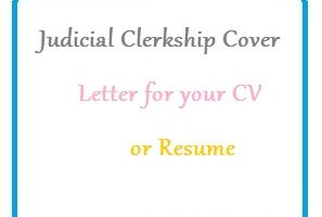Judicial Clerkship Cover Letter for your CV or Resume