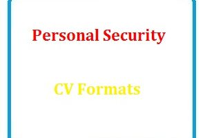 Personal Security CV Formats