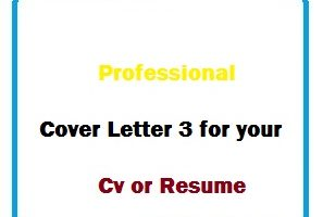 Professional Cover Letter 3 for your Cv or Resume