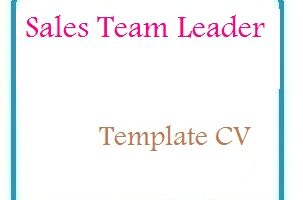 Sales Team Leader CV Formats
