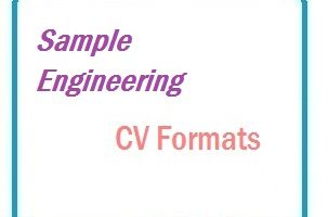 Sample Engineering CV Formats
