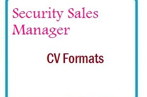 Security Sales Manager CV Formats
