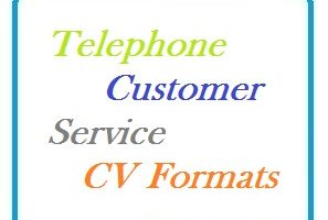 Telephone Customer Service CV Formats