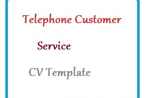 Telephone Customer Service CV Template