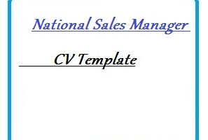 National Sales Manager CV Template