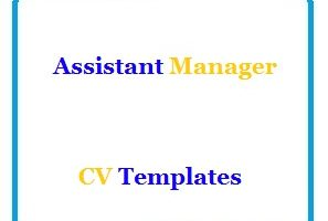 Assistant Manager CV Templates