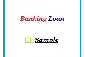 Banking Loan CV Sample