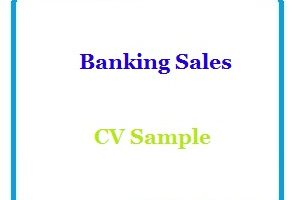 Banking Sales CV Sample