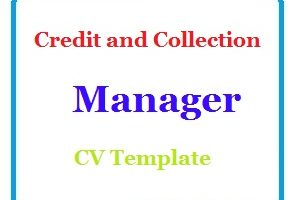 Credit and Collection Manager CV Template