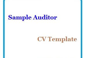 Sample Auditor CV Template