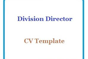 Division Director CV Template