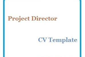 Project Director CV Template