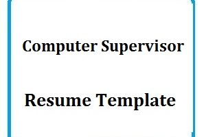 Computer Supervisor Resume Template