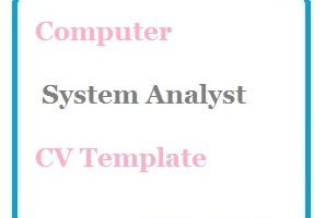 Computer System Analyst CV Template
