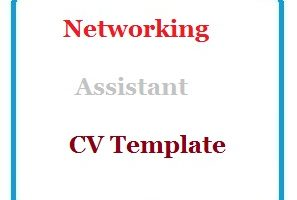 Networking Assistant CV Template