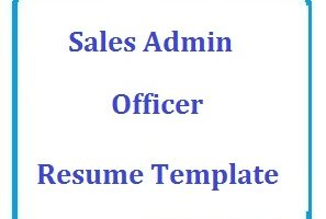 Sales Admin Officer Resume Template