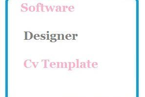 Software Designer Cv Template