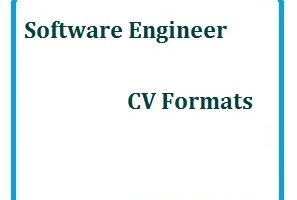 Software Engineer CV Formats