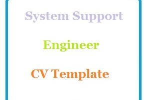 System Support Engineer CV Template