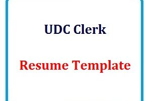 UDC Clerk Resume Template