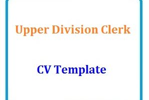 Upper Division Clerk Cv Template