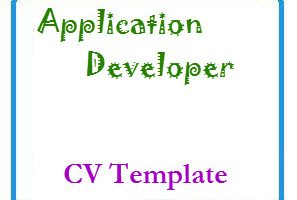 Application Developer CV Template