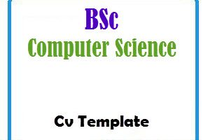 BSc Computer Science CV Template