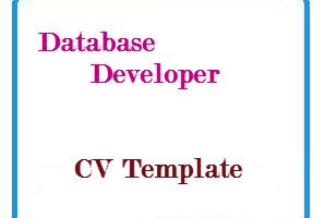 Database Developer CV Template