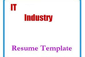 IT Industry Resume Template