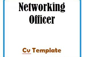 Networking Officer CV Template