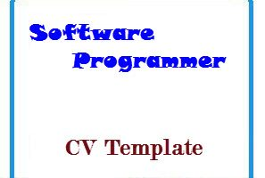Software Programmer CV Template