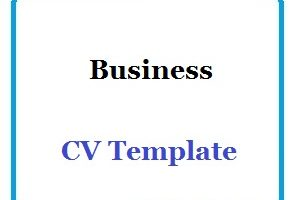 Business CV Template