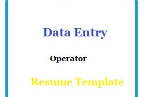 Data Entry Operator Resume Template