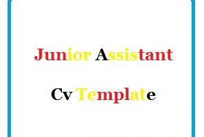 Junior Assistant Cv Template