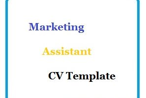 Marketing Assistant CV Template