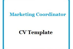 Marketing Coordinator CV Template