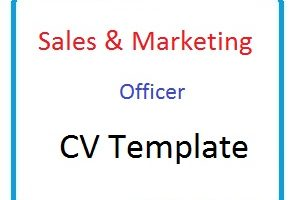 Sales & Marketing Officer CV Template
