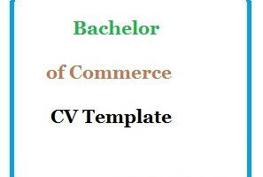 Bachelor of Commerce CV Template