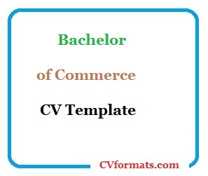Bachelor of Commerce (BCom) CV Template